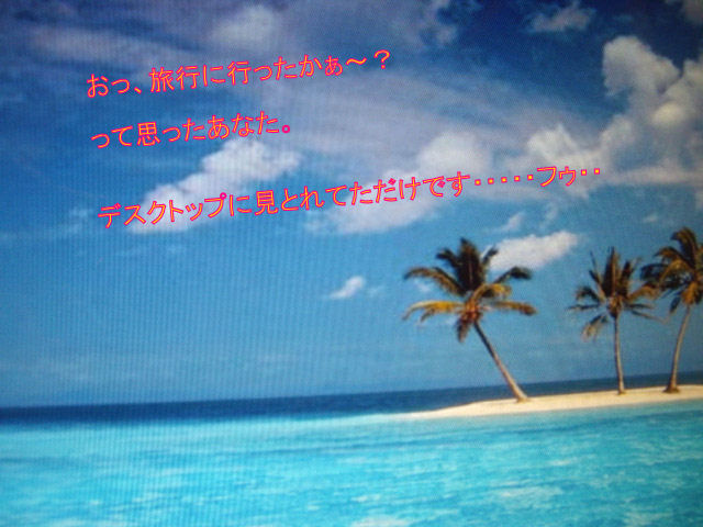 b0113243_1450427.jpg