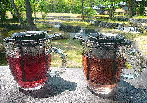 人生にかかせないもの  お茶の時間と紅茶倶楽部&500記事。。。 *。:☆.。†_a0053662_1305221.jpg