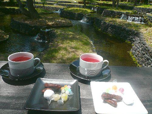 人生にかかせないもの  お茶の時間と紅茶倶楽部&500記事。。。 *。:☆.。†_a0053662_131184.jpg