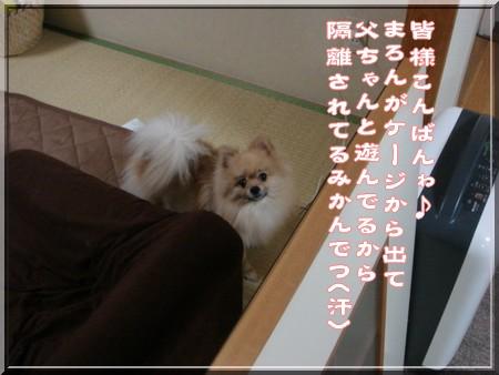 b0078073_23102473.jpg