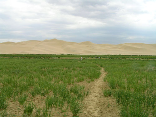 モンゴル ゴビ砂漠5_e0048413_19193273.jpg