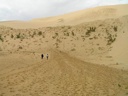 モンゴル ゴビ砂漠5_e0048413_19202293.jpg