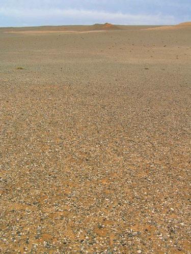 モンゴル ゴビ砂漠6_e0048413_2110219.jpg