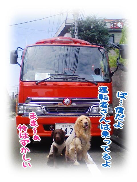 f0109418_0172566.jpg
