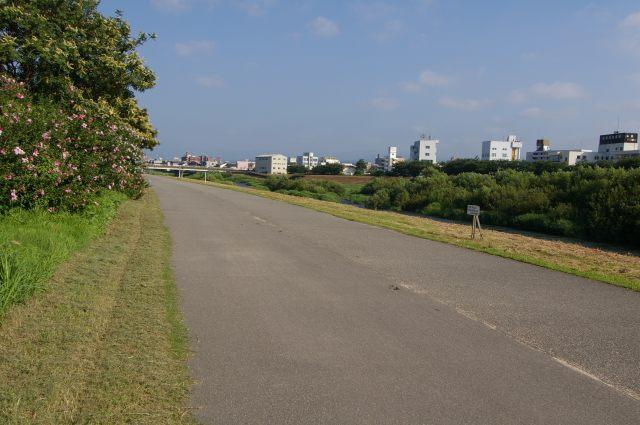 犀川サイクリングロード_d0043136_2214538.jpg