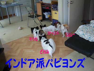 c0048940_22415029.jpg