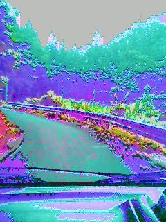 e0099547_20182247.jpg