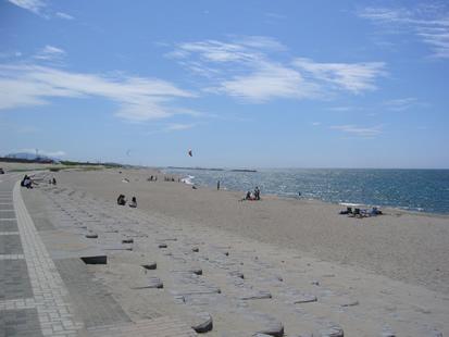 新潟砂丘 : 裸のランチ