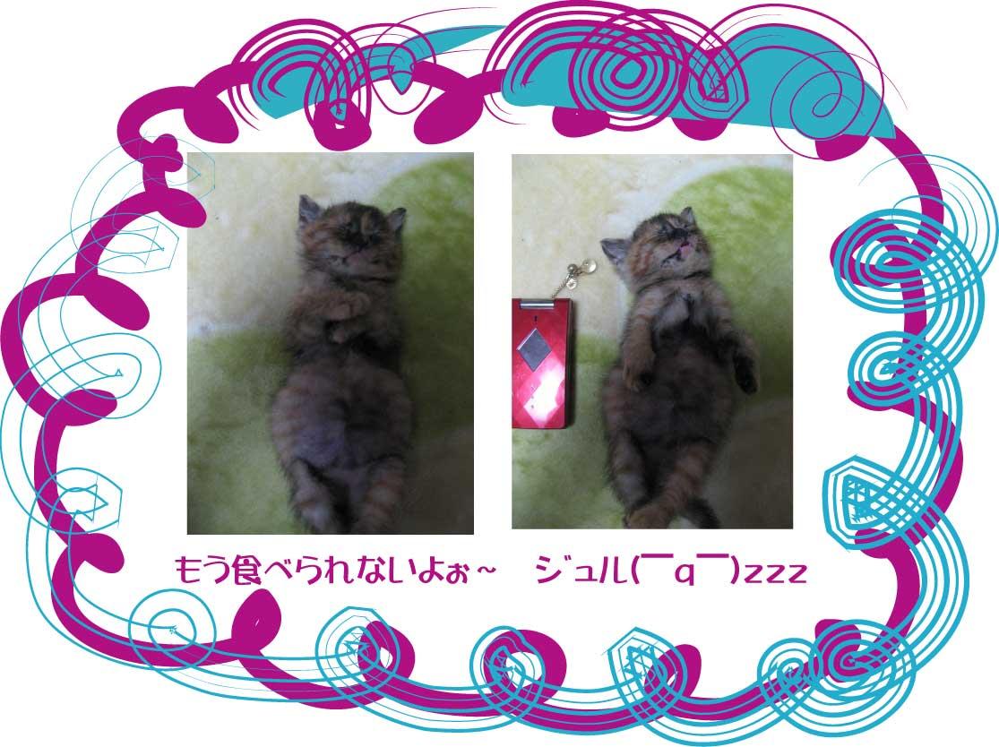 a0071756_1122417.jpg
