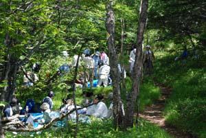 高峯神社 夏の例祭_e0120896_2292176.jpg