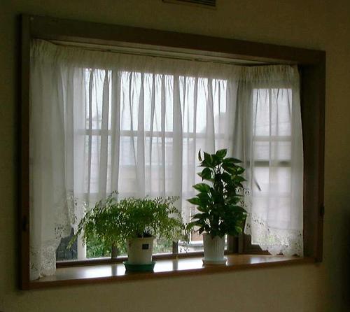 窓とは・・・_b0078597_21203811.jpg