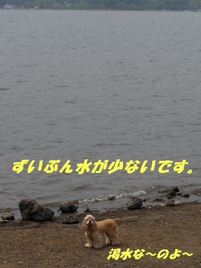 b0067012_17523087.jpg