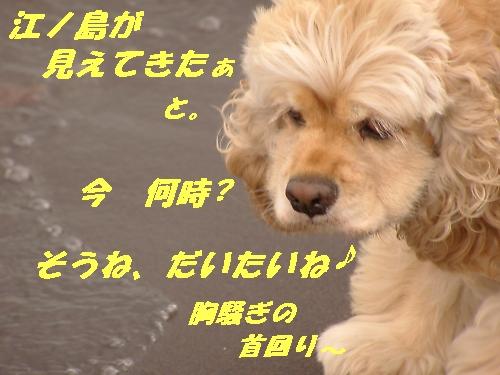 b0067012_1832140.jpg
