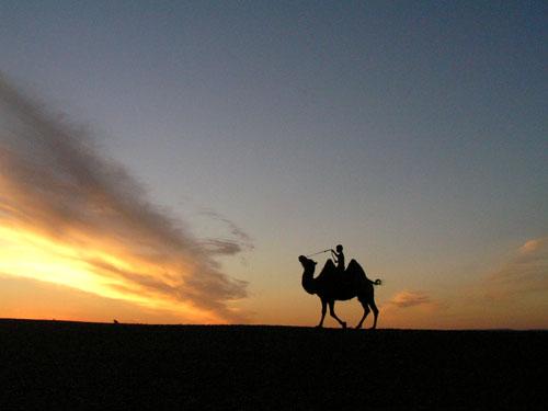 モンゴル ゴビ砂漠7_e0048413_1750691.jpg