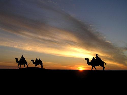 モンゴル ゴビ砂漠7_e0048413_17511814.jpg