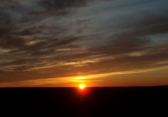 モンゴル ゴビ砂漠8_e0048413_18472687.jpg