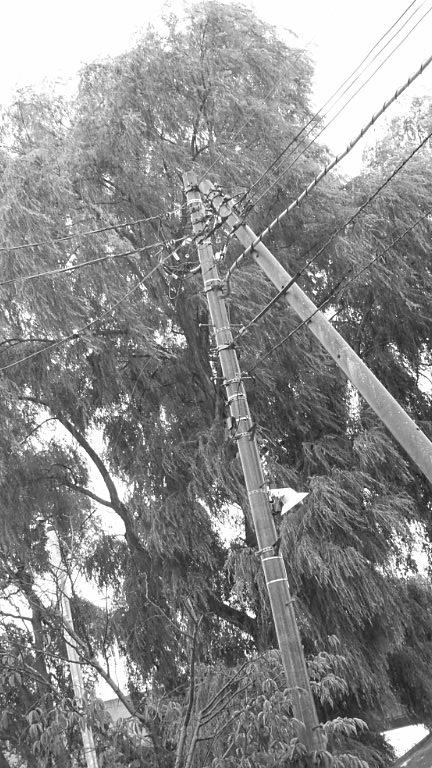 f0142324_1939480.jpg