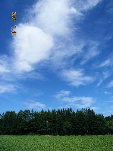 網走は青い空_f0050534_856354.jpg