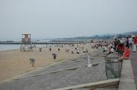 2007夏キャンドル・ナイト in せんなん里海公園 _c0108460_22144111.jpg