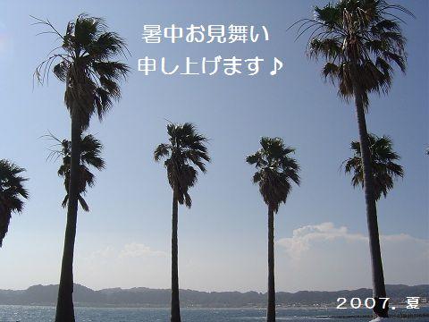 e0032665_915440.jpg