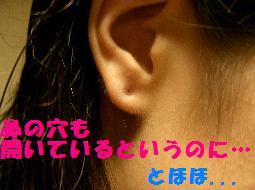 f0065199_0325415.jpg