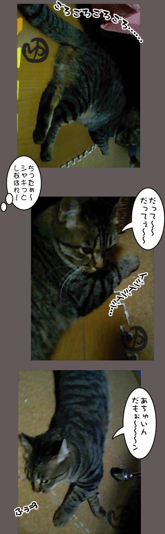 c0012445_9205519.jpg