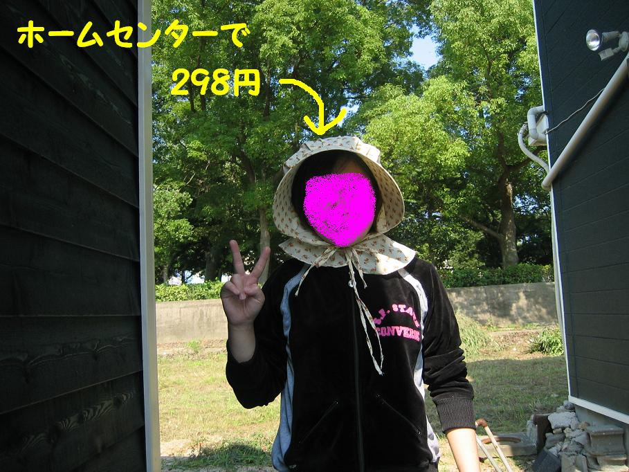 a0080889_2231104.jpg