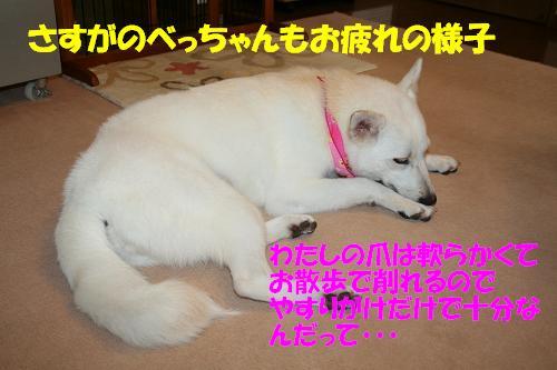 f0121712_1693954.jpg