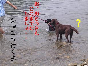 b0113725_14121657.jpg