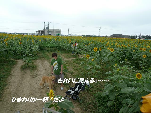f0114128_925192.jpg