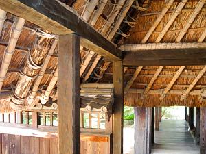 軒先の屋根の内側の部分。竹の骨格とと茅葺の屋根の部分の直線の美しさに惚れ惚れ。