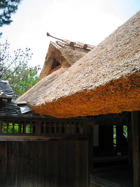 母屋から離れを望む茅葺の屋根の部分。綺麗にカットされた屋根の厚みが美しい。