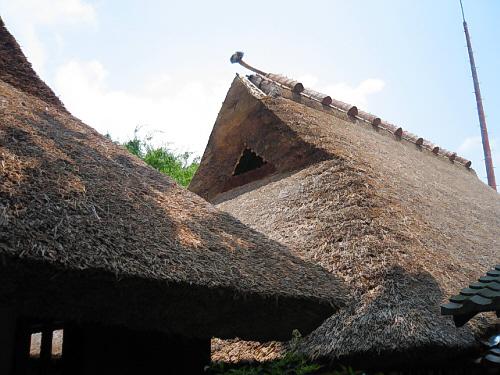 母屋から離の屋根を裏側から撮った一枚。ため息が出るほど美しいラインで仕上がっている屋根です。