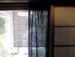 b0035734_2015145.jpg