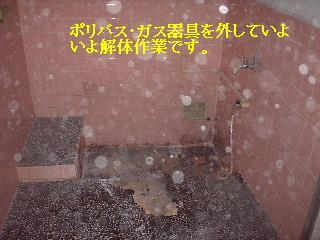 f0031037_17364769.jpg