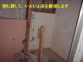 f0031037_1737988.jpg