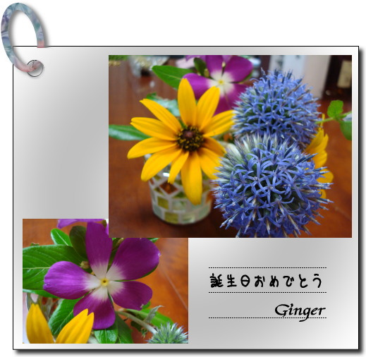 b0066947_22108.jpg