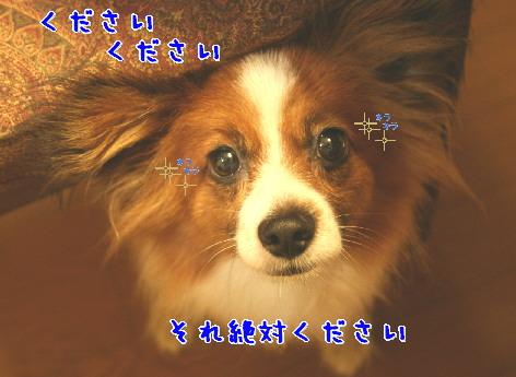 d0013149_282858.jpg