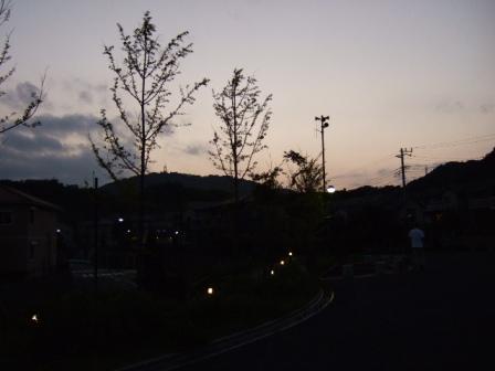 b0087400_23314817.jpg
