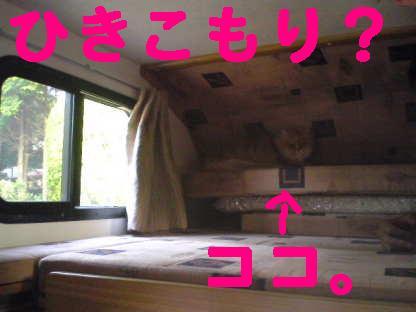f0138304_16314238.jpg