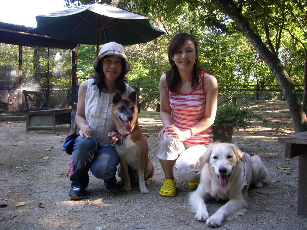 琵琶湖でのワンチャン運動会はいかがでしたか?_c0110115_1341415.jpg