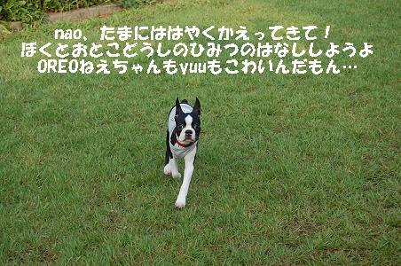 d0078616_20553693.jpg
