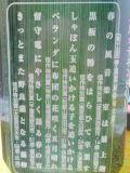 f0121620_9564669.jpg