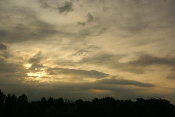 雷雨のあとで前(笑)_e0077521_0241995.jpg