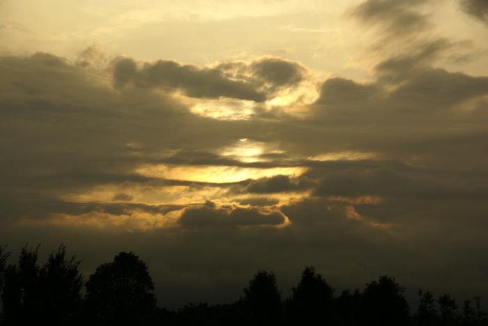 雷雨のあとで前(笑)_e0077521_0244329.jpg