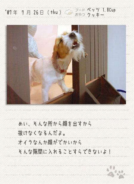 b0040323_22232841.jpg