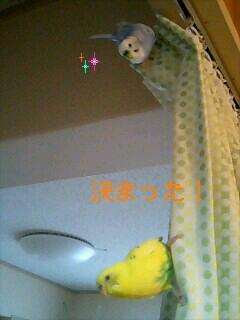 d0107965_22462126.jpg