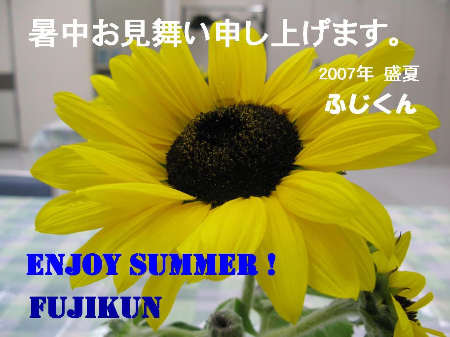 b0041473_8431890.jpg