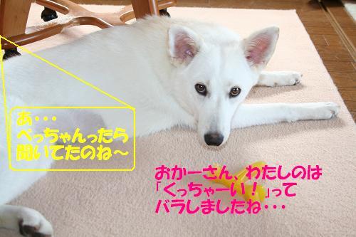 f0121712_10134926.jpg