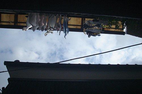 見上げると洗濯物、北千住の路地裏にて。_e0000951_2157748.jpg
